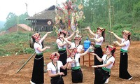 Activities to celebrate Cultural Day of Vietnam's Ethnic Groups