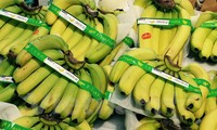 Vietnam's bananas sold in Japan