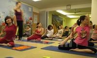Vietnam to observe 2nd International Yoga Day