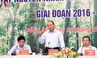 Prime Minister urges central highlands to restore, develop forests