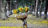A Love Poem At Autumn's End - Tan Nhan
