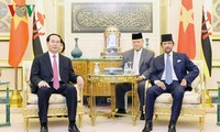 Vietnam, Brunei issue joint statement