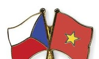 Vietnam promotes cooperation with political parties in the Czech Republic