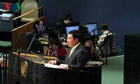 Vietnam supports multilateral solution to peace, cooperation, development