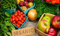 Growing demand for organic food