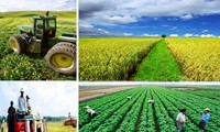 New rural development and agricultural restructuring