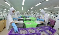 Seafood exports benefit from Vietnam-EAEU FTA