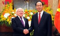 Promoting Vietnam-Ireland cooperation