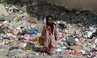More than 50 dead in heavy Yemen fighting