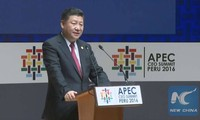 China calls for joint efforts to build FTAAP