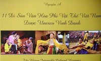 Photo book shows off Vietnam heritage