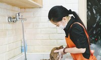 Pet care, a new job in China