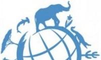 Vietnam proposes measures to eliminate wildlife trafficking