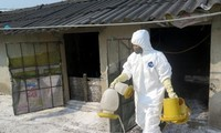 New A/H5N6 avian flu outbreak spotted in Quang Tri
