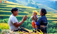 Happiness felt in families in Vietnam