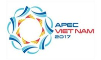 Ho Chi Minh City contributes to APEC meetings' success