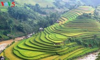 Yen Bai ready for Mu Cang Chai tourism festival