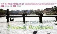 "Vietnamese and South Korean bilateral play ""Ben bo xa lac"" conveys message of humanity"