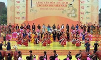 Spring Festival honors ethnic cultures