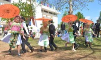 Over 100 artisans perform at Spring Festival in Gia Lai