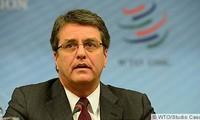 Vietnam confía en Brasil para la dirección de la OMC