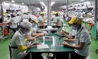 Vietnam y Corea del Sur por un intercambio comercial bilateral de 70 mil millones de dólares