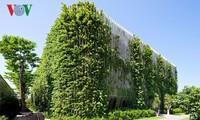 Arranca el concurso de arquitectura verde Spec Go Green en Vietnam
