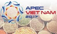 Vietnam sigue con sus prioridades de desarrollo  en el Año APEC 2017