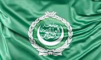 Liga Árabe apoya las soluciones políticas a los conflictos en Yemen, Siria y Libia