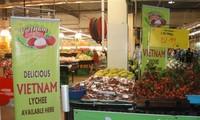 Tìm hướng đẩy mạnh xuất khẩu của Việt Nam sang Malaysia