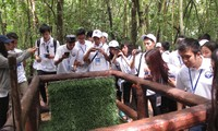 Thanh niên kiều bào tham quan địa đạo Củ Chi và Bảo tàng chứng tích chiến tranh