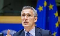 Países aliados respaldan participación de OTAN en coalición internacional contra Estado Islámico