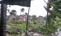 Suministran apoyo millonario a Vietnam para superar las consecuencias del tifón Damrey