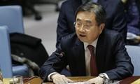 Vicecanciller surcoreano pide al Norte que participe en las Olimpiadas de Invierno de PyeongChang