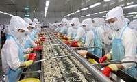 Vietnam ratifica el proyecto del mejoramiento de la competitividad de los productos exportables