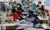 Vietnam determinado a aprovechar las ventajas coyunturales de la población activa