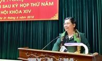 Vicepresidenta del Parlamento vietnamita contacta con el electorado en la zona norteña