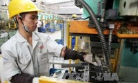 Vietnam incentiva la transferencia tecnológica entre empresas extranjeras y nacionales