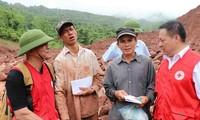 Cruz Roja de Vietnam fortalece la cooperación internacional