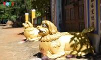 Visita a la pagoda Thien An