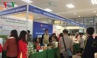 Vietnam promueve el espíritu de emprendimiento entre los estudiantes
