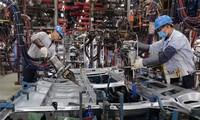 "Vietnam resalta como destino de inversión más ""caliente"" de Asia, afirma Forbes"