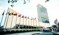 La Organización de Naciones Unidas llama a cumplir el acuerdo de paz en República Centroafricana