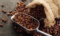 Tailandia incrementa la compra de café vietnamita