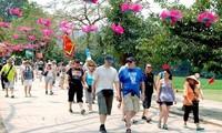 Afluencia de turistas extranjeros en Vietnam alcanza 7,3 millones en los primeros cinco meses de 2019