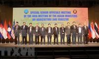 Comienza Conferencia de Altos Funcionarios de Agricultura y Silvicultura de la Asean en Vietnam
