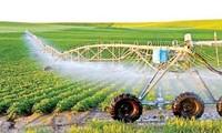 Vietnam por mejorar su adaptación al cambio climático con la reestructuración agrícola