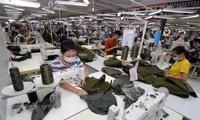 Empresas vietnamitas toman iniciativas en mercado de CPTPP