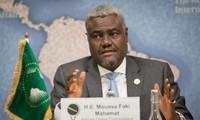 Unión Africana llama a respetar la integridad territorial de Siria