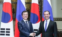 Corea del Sur y Rusia se esforzarán conjuntamente para establecer la paz